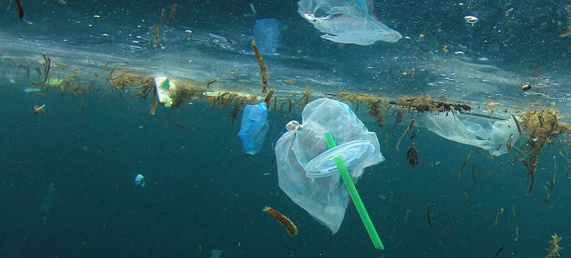 Plastic waste and recycling in the EU: facts and figures